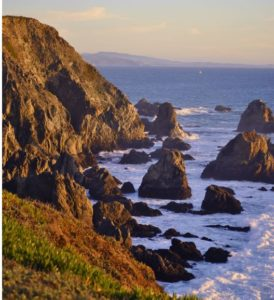 beautiful view of bodega bay in California
