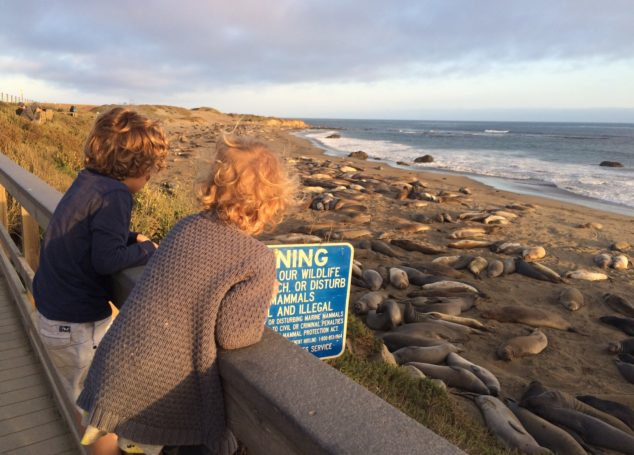 10 Reasons You Should Travel with Your Children