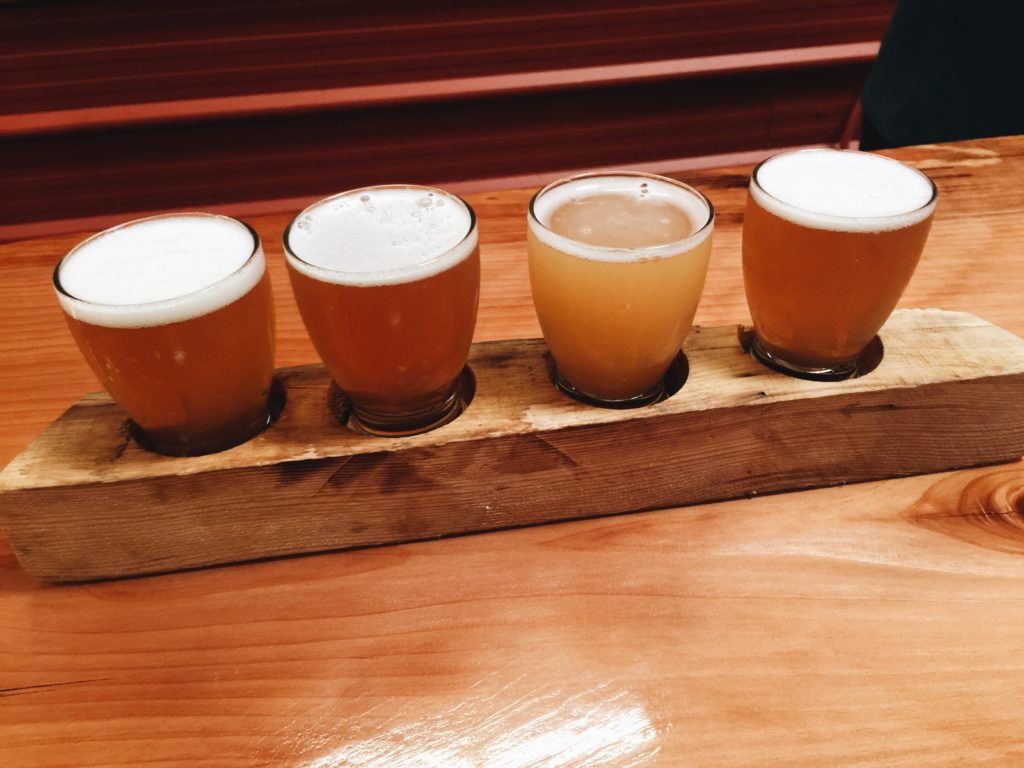 Beer tasting lineup at a brewery