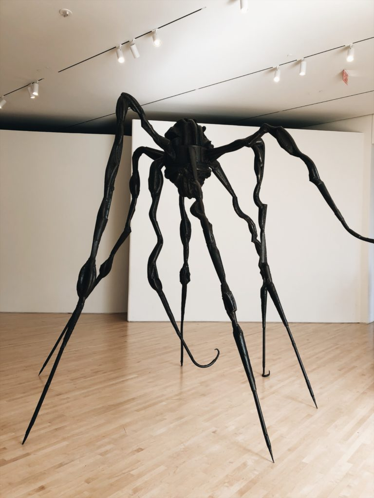 SF Moma spiders