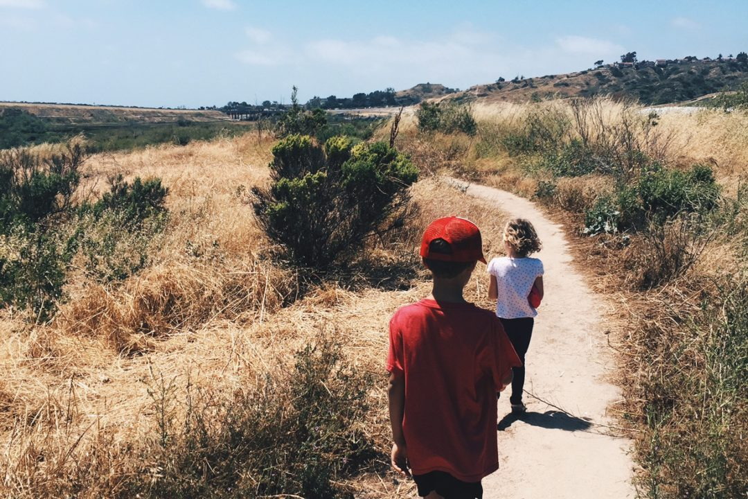 Go on a Nature Walk with the kids this summer